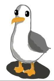 Image result for cartoon seagull images
