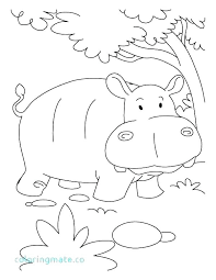 Hippo Coloring Pages Coloring Pages Hippo Hippo Coloring Pages To