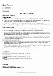 Good Resume Gorgeous Good Resumes Examples A Good Resume Template Resume Builder