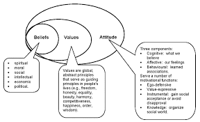 many beliefs form values which s