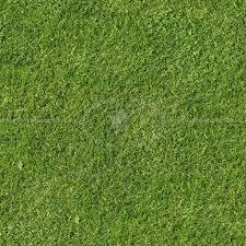 seamless dark grass texture. Green Grass Texture Seamless 12967 Dark