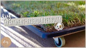 diy apartment pet potty