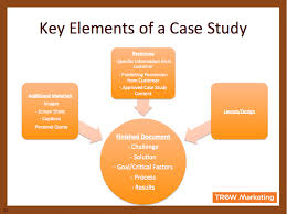 Case Study Template Elements Of A Case Study Template Google Search What I Do