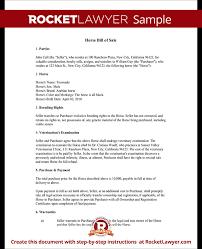 Equine Bill Of Sales Horse Bill Of Sale Form Bill Of Sale For Horse Template With Sample