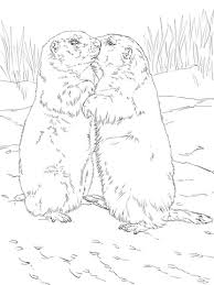 Small Picture Kissing Prairie Dogs coloring page Free Printable Coloring Pages