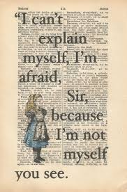 Alice In Wonderland Quote Gorgeous Wwwtumblrsearchaliceinwonderland Quotes And Memes
