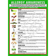 Food Allergy Awareness A3 Laminated Poster Amazon Co Uk