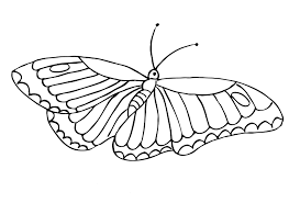 You can use these printable butterflies in four color schemes in collages, scrapbook pages, homemade cards, posters, and journal pages. Butterfly Coloring Pages For Kids 100 Images Print For Free
