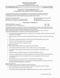21 Lovable Insurance Agent Resume Job Description Nadine Resume