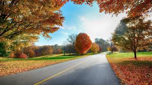 hd images 1080p nature autumn
