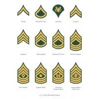 Army Enlisted Mos Structure Chart Enlisted Ranks