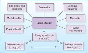 Using The Newcastle Model To Understand People Whose