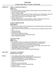Resume Plus Hire A Resume Writer Construction Project Hire Resume
