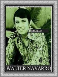 Walter Navarro Resume