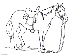 Small Picture Cartoon Horse Coloring Pages Coloring Pages