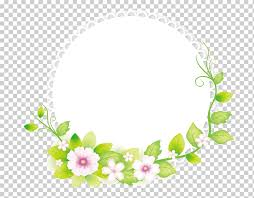 round white green and pink fl