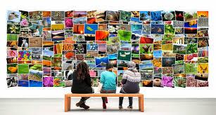royalty free image software