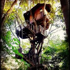 Rabeang Pasak Tree House Resort  Now 33 Was ̶5̶5̶  UPDATED Treehouse In Thailand