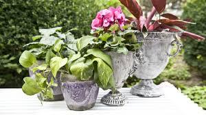 Idee Per Abbellire Il Giardino : Come addobbare un giardino idee creative per decorare la casa con