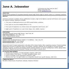 Veterinary Technician Sample Resume 19 Veterinary Assistant Resume