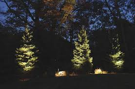 landscape lighting trees. Perfect Trees Landscape Lighting Trees Modest On Other Pertaining To Understanding How  Uplight In Your 14 P