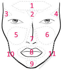 Acne Face Chart Gallery Of Chart 2019