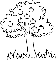 Small Picture Fruit Coloring Pages Of Plants And Trees Coloring Coloring Pages