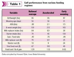 Steer Feeding Chart Feeding Dairy Steers For Profitable Weight Gain