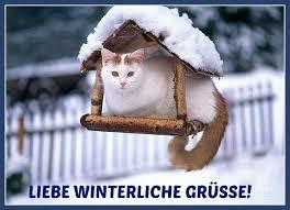 Witzige Guten Morgen Sprüche Gb Pics Jappy Facebook Whatsapp
