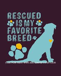 animal rescue quotes and sayings. Plain And RESCUED FAVORITE IBREEIDu0027 With Animal Rescue Quotes And Sayings