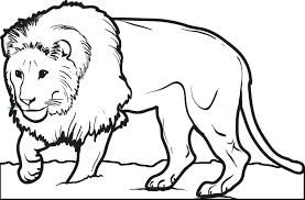 lion coloring page coloring page lion lion coloring pages with lion coloring pages free printable coloring