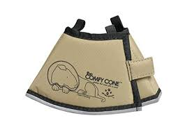 Comfy Cone All Four Paws The Pet Recovery Collar