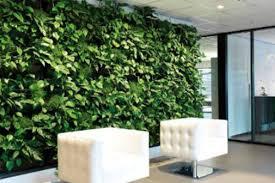 green wall office. Green Walls Wall Office A
