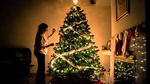 essay on christmas day for school students and kids to  christmas tree girl