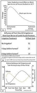 Blackspot Bruise In Potatoes 5 621 Extension
