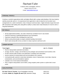 Travel Agent CV Example and Template