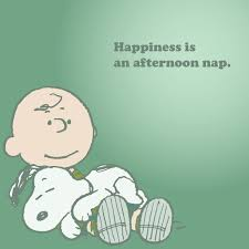 Charlie Brown Quotes 14 Best 24 Best Happiness Is Images On Pinterest Peanuts Cartoon Peanuts