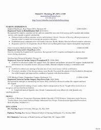 Resume Writing Australia Breathtaking 13 New Resume Writing Template
