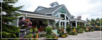 north star gardens gifts and cafe is a licensed one of kind nursery because we grow a lot of our own nursery stock such as trees shrubs