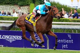 2014 Breeders Cup Charts Racing News Lady Eli Is Eclipse Finalist