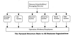 Curious Centralized Organization Chart 37 Small Business