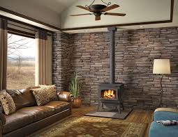 Wood Stove Living Room Design Wood Burning Stoves Gas Fireplace Woodburning Fireplaces