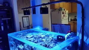Wall Mounted Fish Tank Light Pin On Aquariums