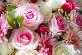 Стокові фотографії Літні квіти та роялті-фрі зображення Літні квіти |  Depositphotos®