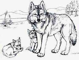 free coloring pages animals in winter new free coloring pages for s printable easy to color