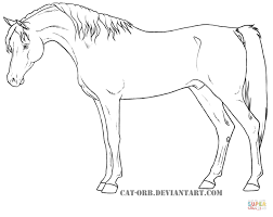 Small Picture Egyptian Arabian coloring page Free Printable Coloring Pages