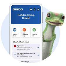 When she called geico to let them. How To Contact Us Customer Service Information Geico