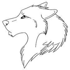 891.02 kb, 1505 x 1503. Top 15 Free Printable Wolf Coloring Pages Online