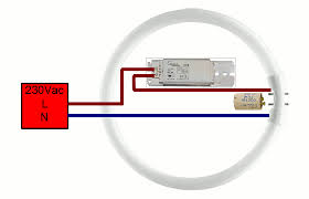 electronic ballast 2-lamp t8 ballast wiring diagram at Wiring Diagram For Fluorescent Ballast