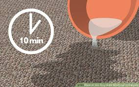 image titled get dog urine smell out of carpets step 6